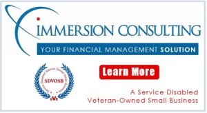 Immersion-Consulting-ad-300x164.jpg